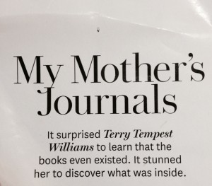 my_mothers_journals