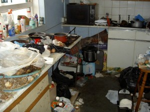 A Slovenly Kitchen. Photo courtesy of Google Images