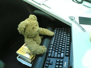 Teddy Bear at Work